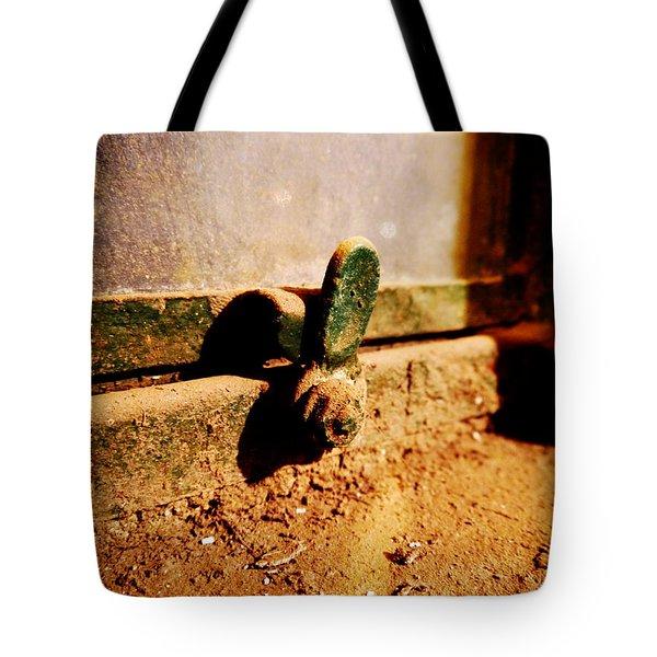 Dusty Window Tote Bag by Richard Reeve