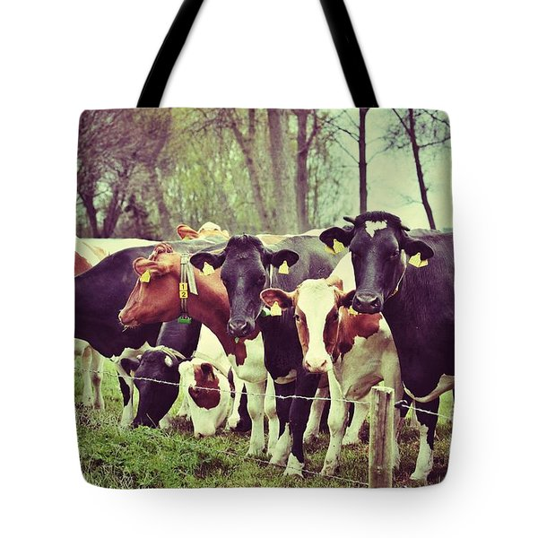 Tote Bag featuring the photograph Dutch Cows by Nick  Biemans