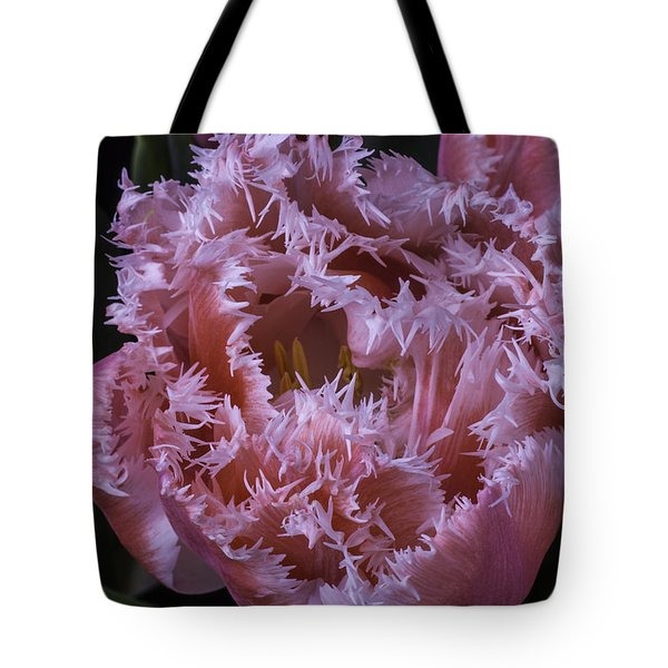 Dutch Tulip Tote Bag