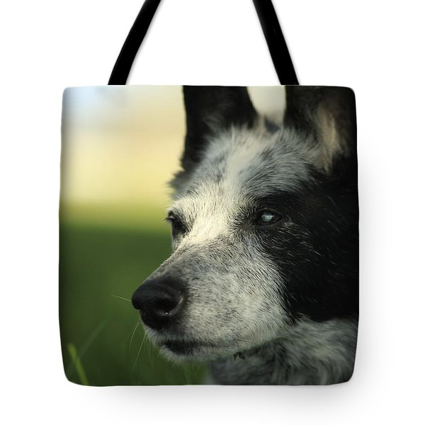Dutchess Tote Bag