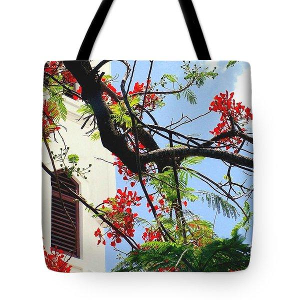 Duval Street Flame Tree Tote Bag by Valerie Reeves