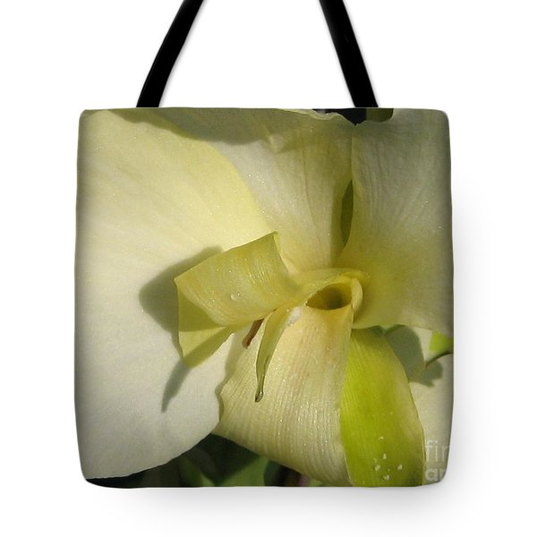 Tote Bag featuring the photograph Dwarf Canna Lily Named Ermine by J McCombie