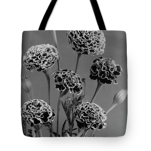 Dwarf Monarch Marigolds Tote Bag