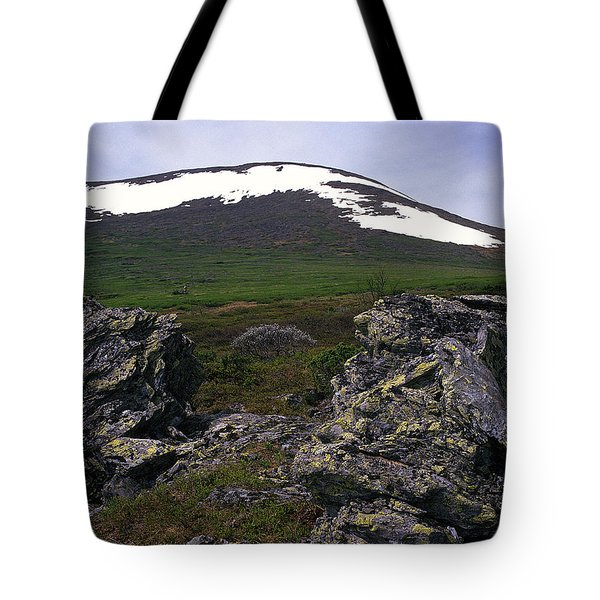 Tote Bag featuring the photograph Dyatlov's Pass by Vladimir Kholostykh