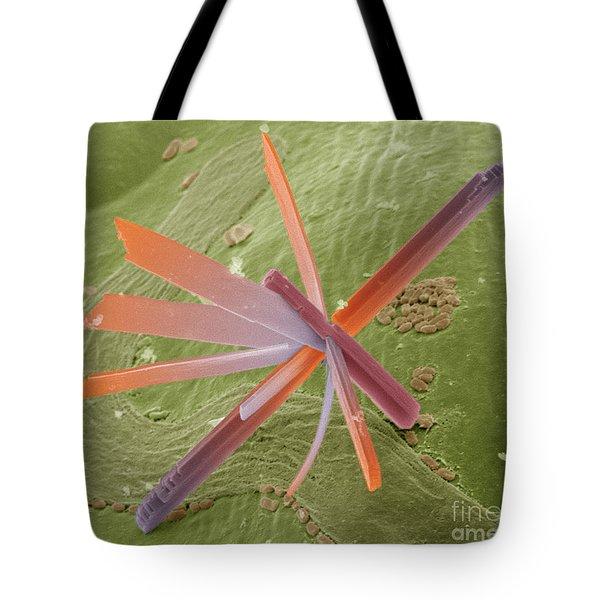 E8400300 - Pesticide Tote Bag by Spl