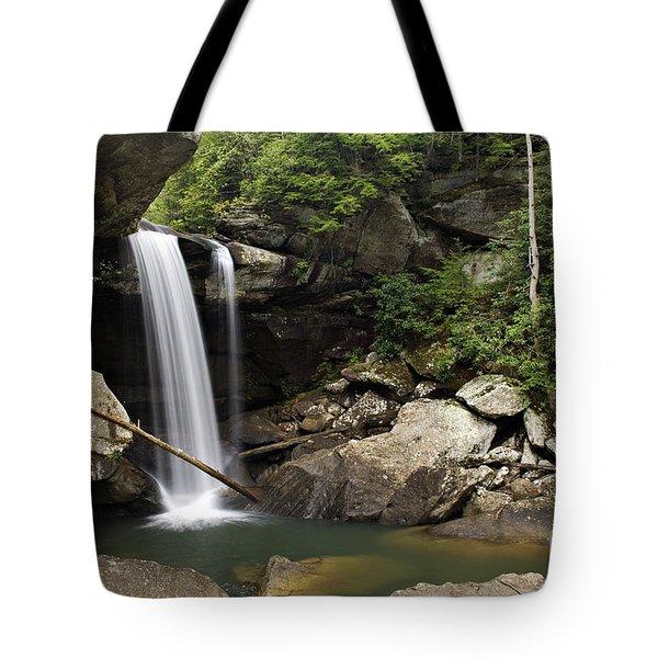 Eagle Falls - D002751 Tote Bag by Daniel Dempster