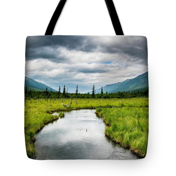 Eagle River Nature Center Tote Bag