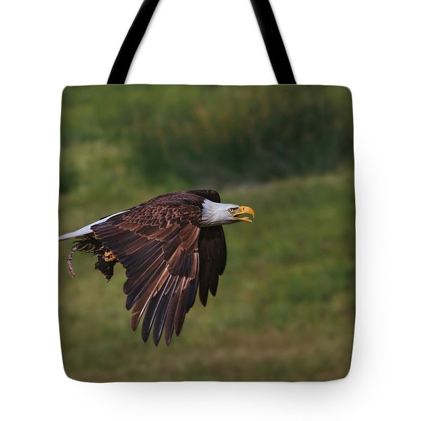 Eagle With Prey Tote Bag