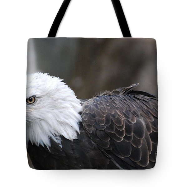 Eagle With Ruffled Feathers Tote Bag by DejaVu Designs
