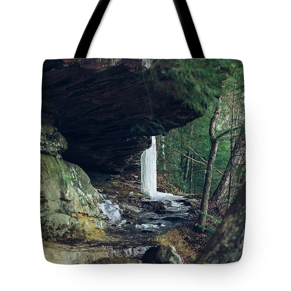 Eaglefalls Trail In Winter Tote Bag