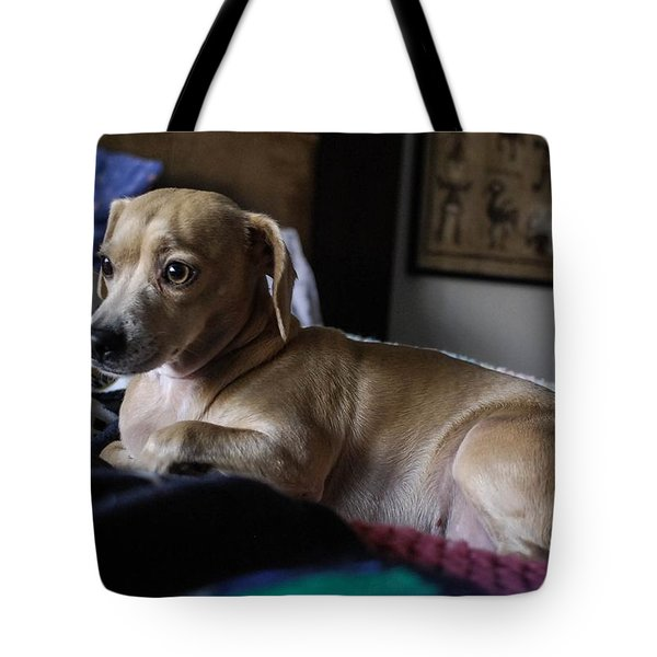 Tote Bag featuring the photograph Early by Angela J Wright