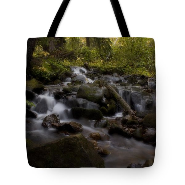 Tote Bag featuring the photograph Early Autumn Cascades by Ellen Heaverlo