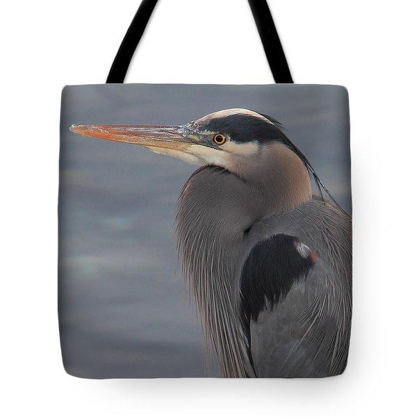Early Bird 2 Tote Bag