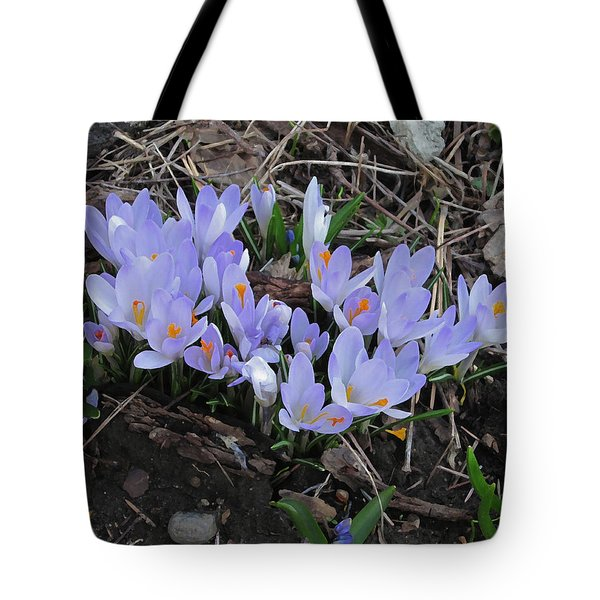 Early Crocuses Tote Bag by Donald S Hall