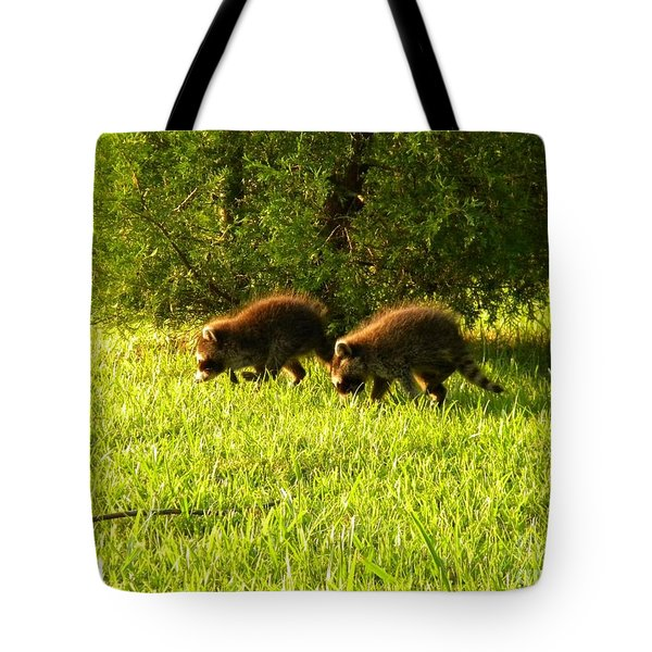 Early Evening Explorers Tote Bag