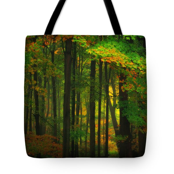 Early Fall 4 Tote Bag