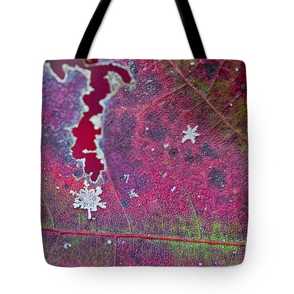 Early Fall Snow Flakes Tote Bag by Dan Friend