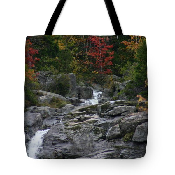 Tote Bag featuring the photograph Early Fall Waterfall by Denyse Duhaime