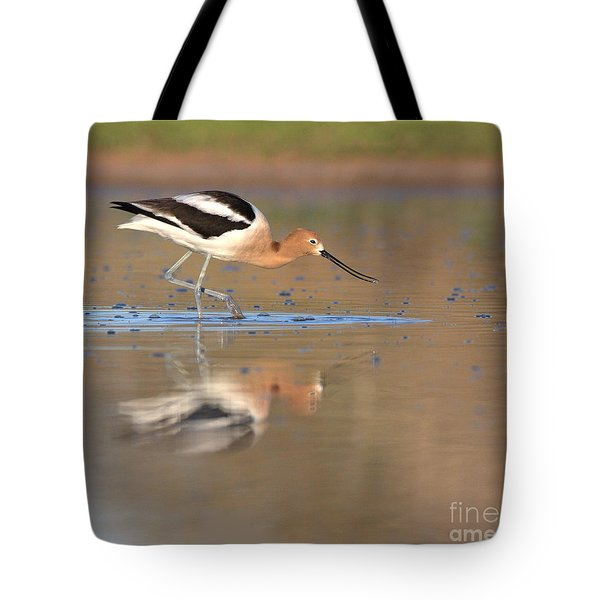 Tote Bag featuring the photograph Early Morning Avocet by Ruth Jolly