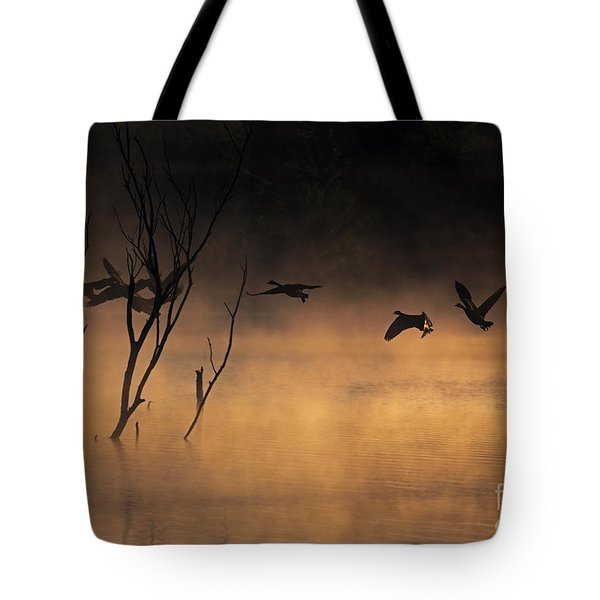 Early Morning Flight Tote Bag by Elizabeth Winter