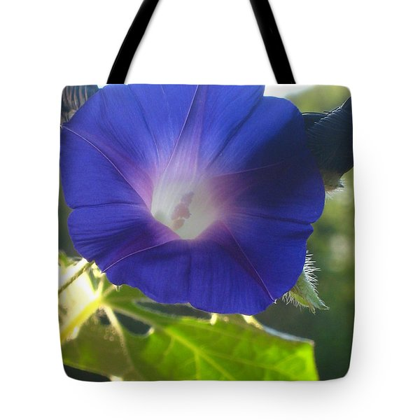 Early Morning Glory Tote Bag by Jennifer E Doll