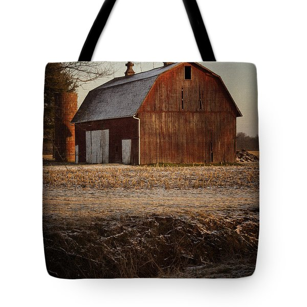 Early Morning Light Tote Bag by Kathleen Scanlan