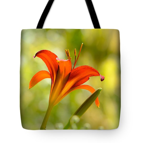 Early Morning Portrait Tote Bag by Amy Porter