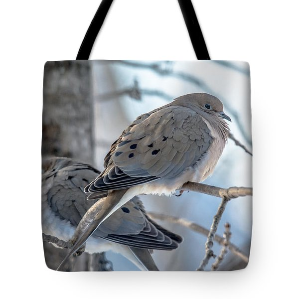 Early Mourning Tote Bag by Cheryl Baxter
