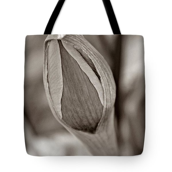 Early Spring Tote Bag by Chris Berry