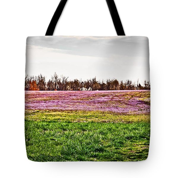 Tote Bag featuring the photograph Early Spring Field by Greg Jackson