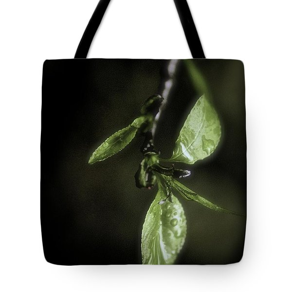 Early Spring Leaves Tote Bag
