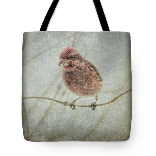 Early Spring Visitor Tote Bag