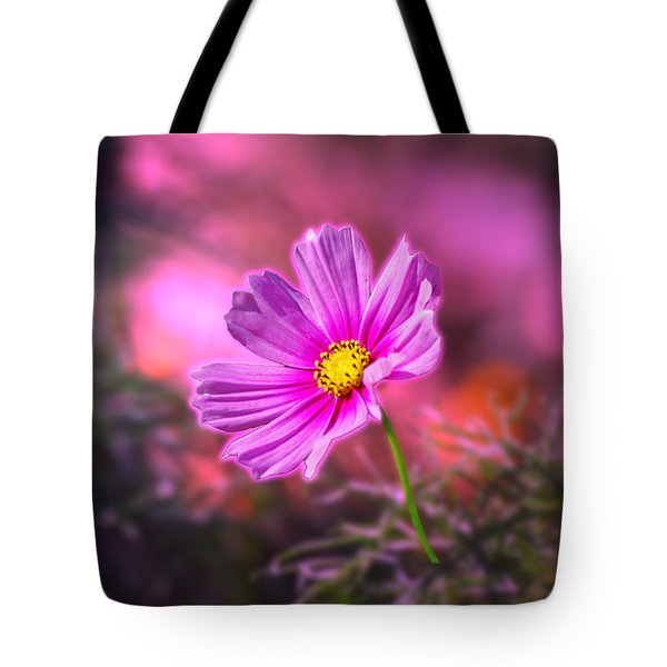 Early Sun Light Tote Bag by Thomas Woolworth