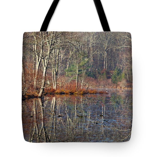 Early Winter Reflects Tote Bag by Karol Livote
