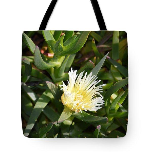 Earth Music Tote Bag