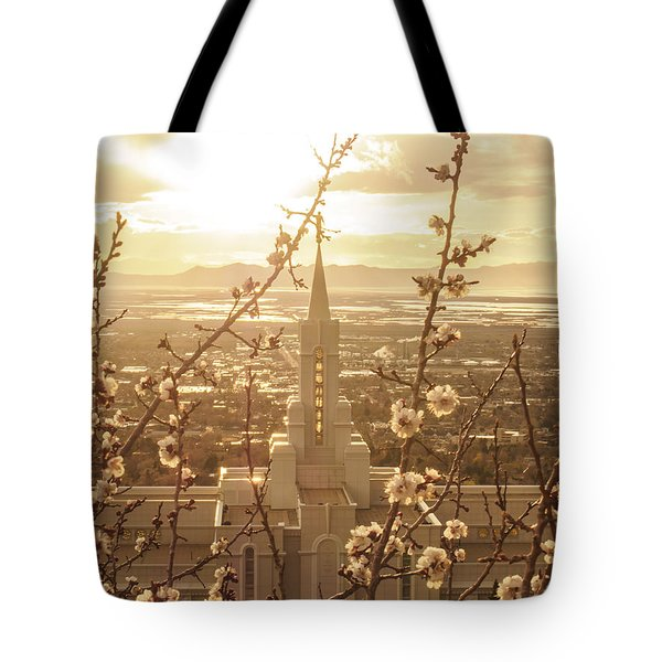 Earth Renewed Tote Bag