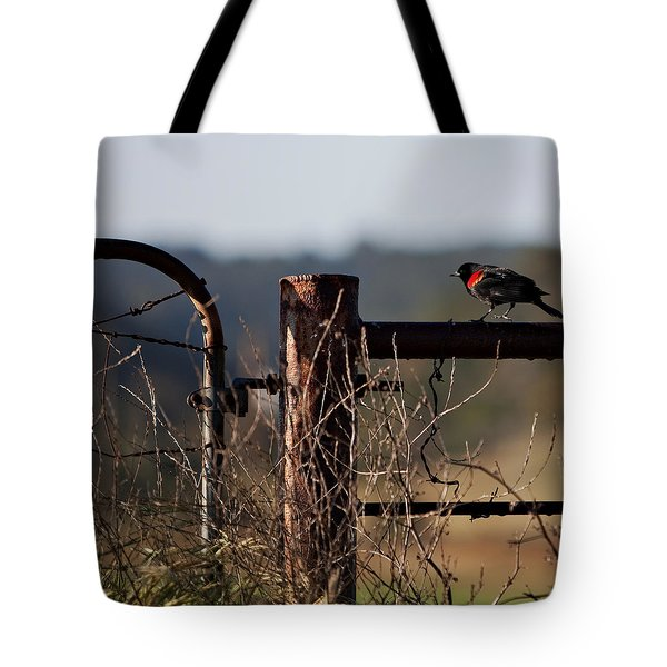 Eary Morning Blackbird Tote Bag by Art Block Collections
