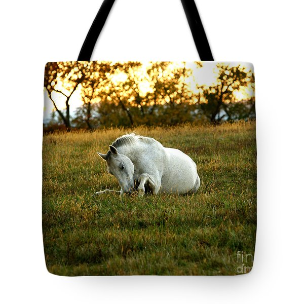 Easier Lying Down Tote Bag