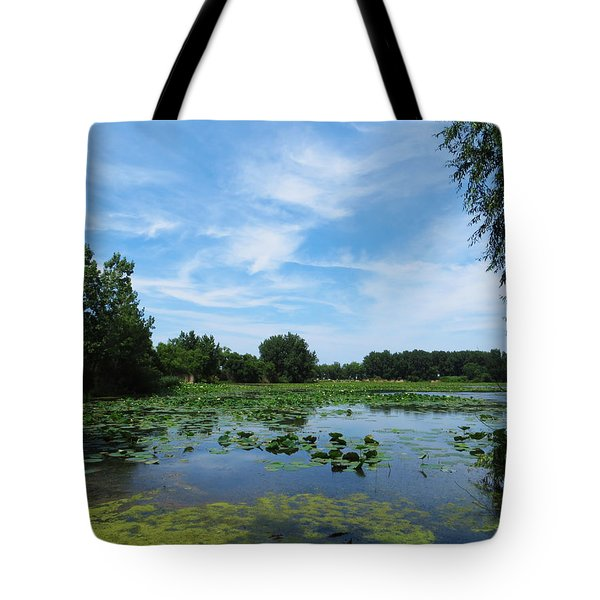 East Harbor State Park - Scenic Overlook Tote Bag by Shawna Rowe