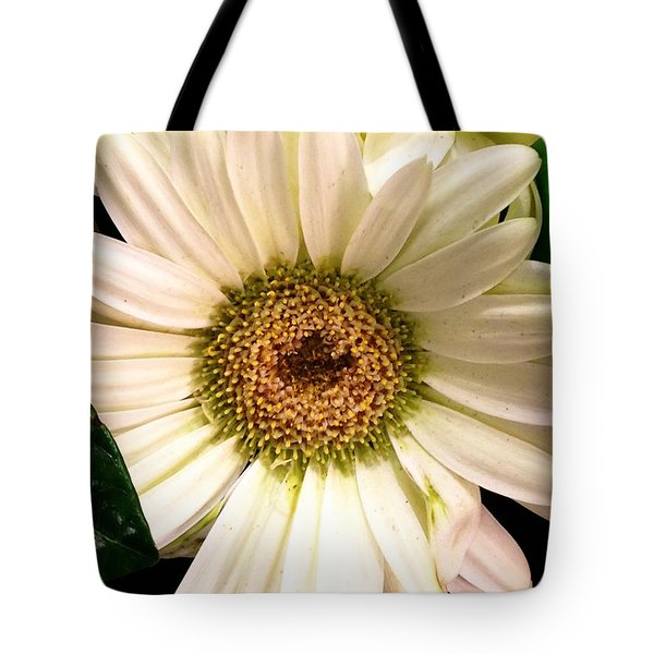Easter 2014-2 Tote Bag by Jeff Iverson