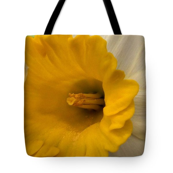 Easter 2014-3 Tote Bag by Jeff Iverson