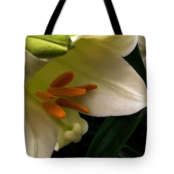 Easter 2014-4 Tote Bag by Jeff Iverson