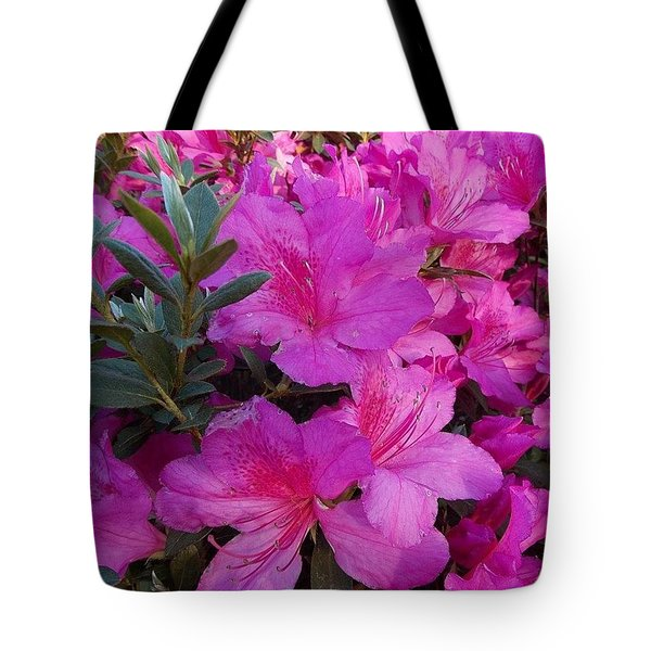 Easter Azaelas Tote Bag