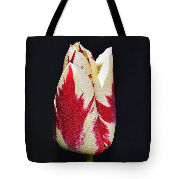 Easter Greetings - Twinkle Tulip Tote Bag