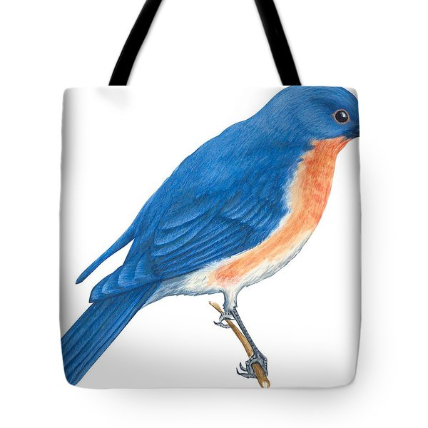 Eastern Bluebird Tote Bag by Anonymous