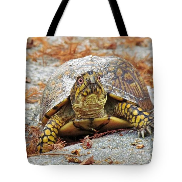 Tote Bag featuring the photograph Eastern Box Turtle by Cynthia Guinn