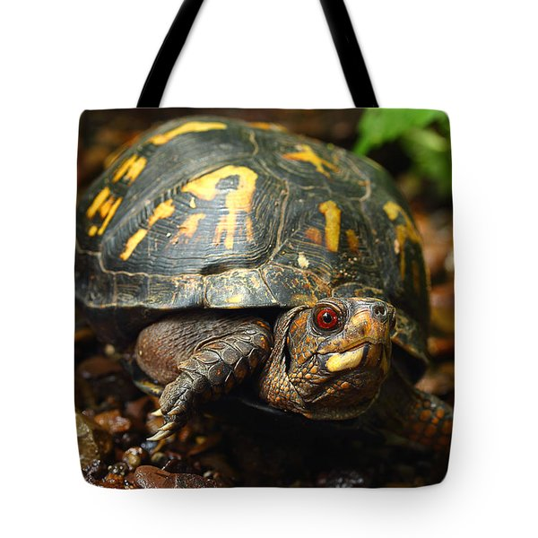 Eastern Box Turtle Tote Bag