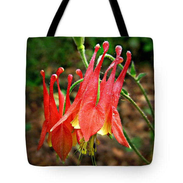 Tote Bag featuring the photograph Wild Eastern Columbine by William Tanneberger