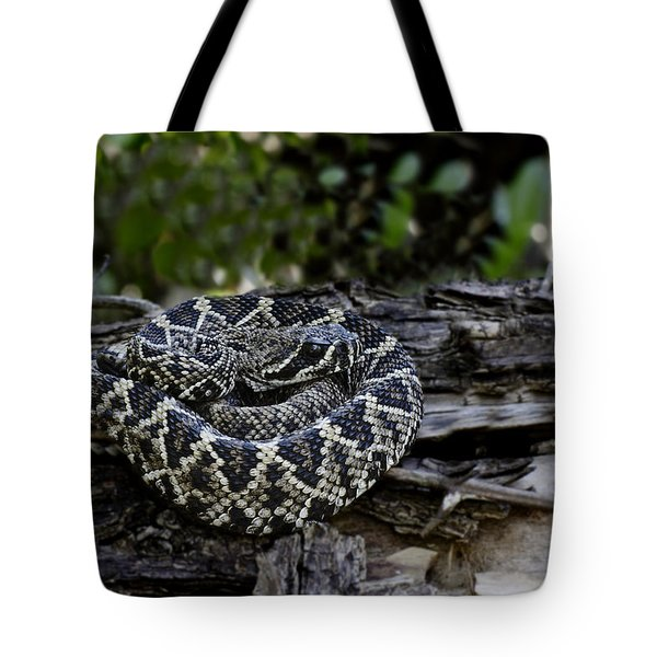 Eastern Diamondback-2 Tote Bag by Rudy Umans