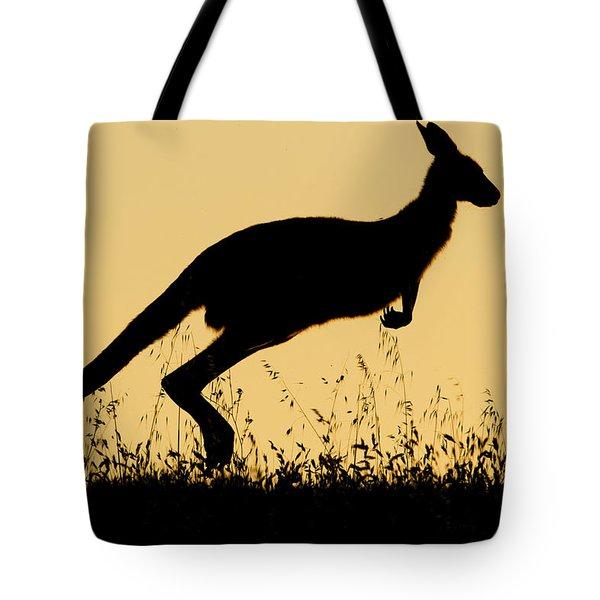 Eastern Grey Kangaroo Hopping At Sunset Tote Bag